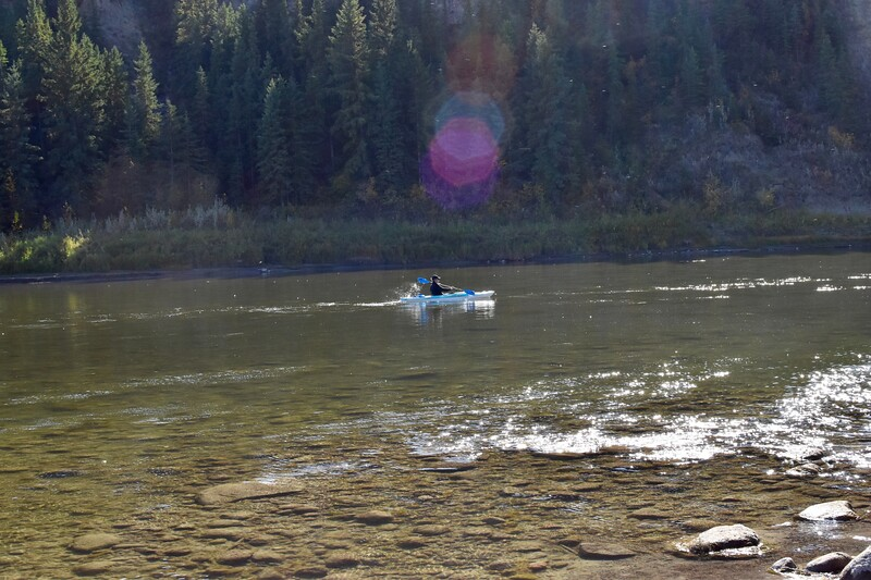 Paddling towards Trochu and surrounded by flying insects.