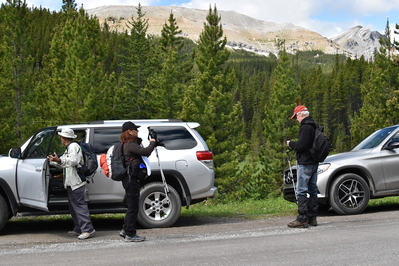 The new norm these days is to expect the parking lots to be full at most of the trailheads so parking along the roadside is not uncommon any longer.