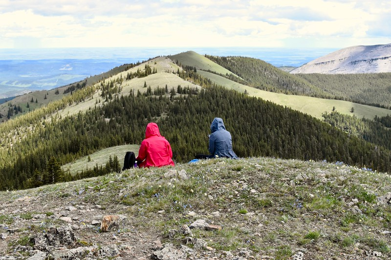 The actual Jumpingpound summit is yonder along the trail in the centre and another kilometre away.  Most of us have been there before so today we are staying put and enjoying the views.<br /> <br /> Besides those are a lot of ups and downs to deal with,