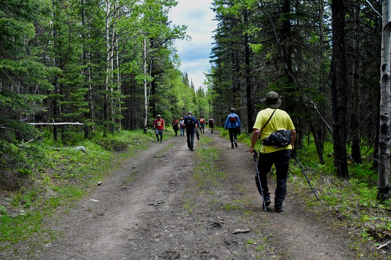 There was a lot of hiker traffic today.
