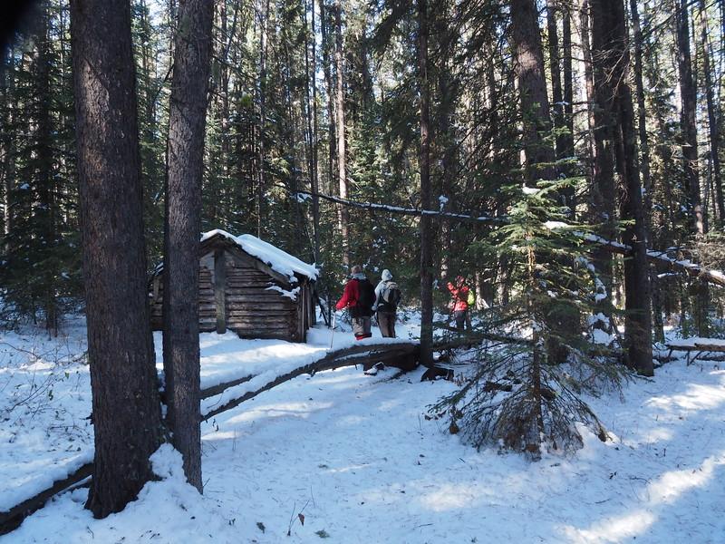 A Hermit Cabin