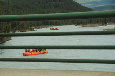 Not While Driving.  Crossing the Athabasca River on our way to Jasper.