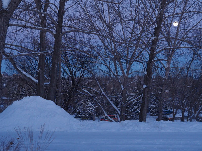 The moon is rising and my pile is still left untouched.