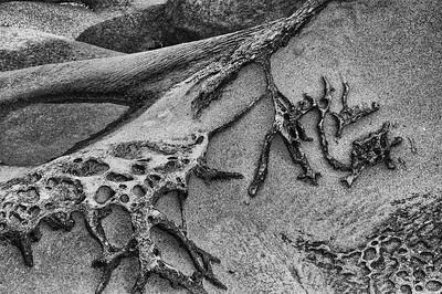 Designs in beach sand.