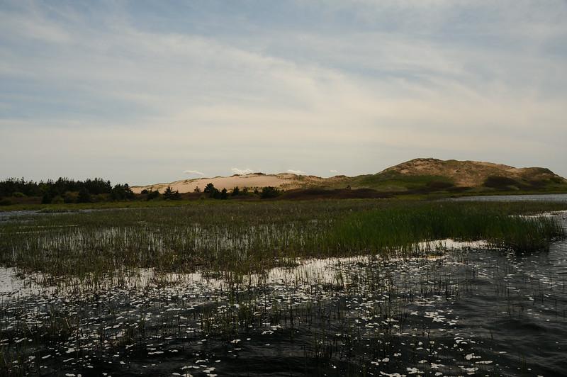 Bowley Pond