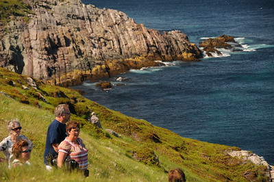 The majority of the visitors however just come to do some ocean viewing and whale watching.