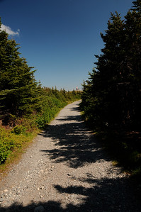 This is a pleasant kilometre, and a little bit, stroll from our cars to the lighthouse.