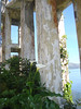Calla lilies, symbol of rebirth, offer a beautiful contrast to the crumbling structures on Alcatraz Island.