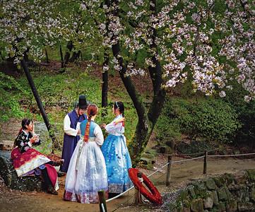 2018-04-07_Changgyeong-gung Walk