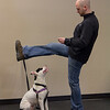 Foster Training_IMG_3936