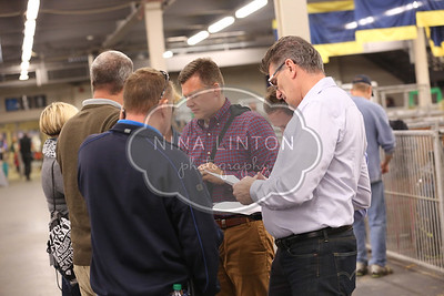 RAWF 2015 Ontario Junior Barrow Sale Candid Photos