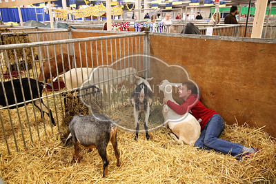 RAWF Youth Goat Show Candids 2016