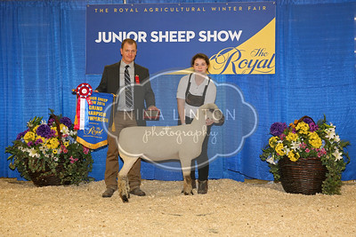 RAWF Youth Sheep Show Champions 2016