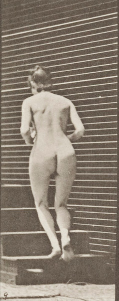 Nude woman turning and ascending stairs with a pitcher and goblet
