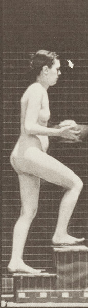 Nude woman ascending stairs and looking around with basin in hands