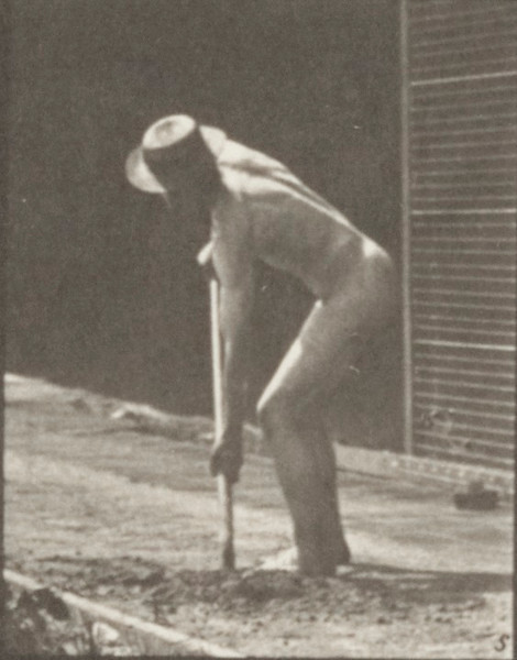 Nude farmer using a long-handled shovel