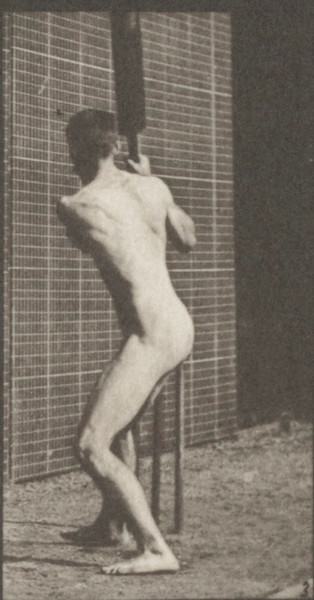 Nude man playing cricket, batting and back cut