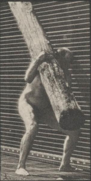 Nude man lifting a log on shoulder