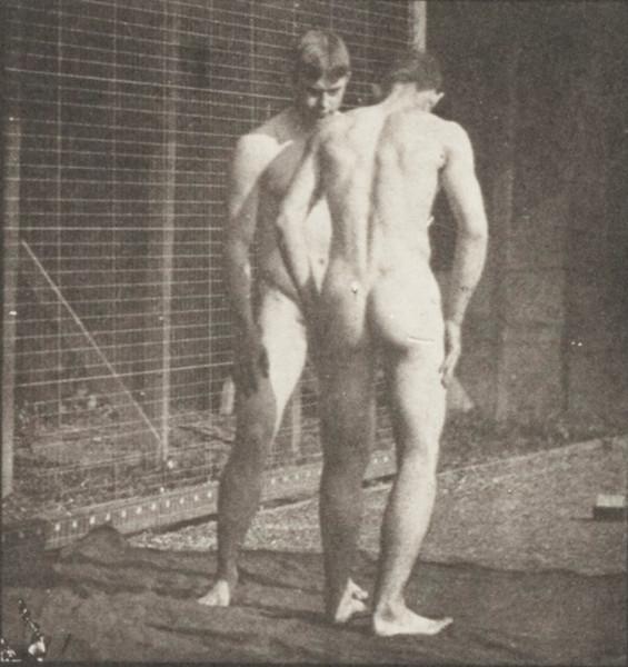 Nude men wrestling, Graeco-Roman