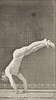 Male acrobat wearing pelvis cloth perfroming vertical press up
