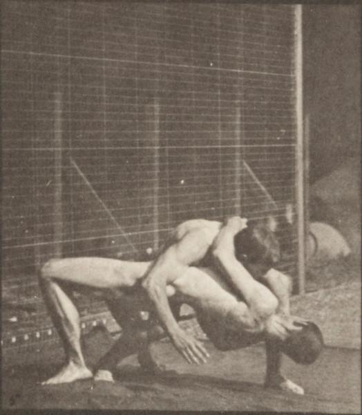 Nude men wrestling, lock
