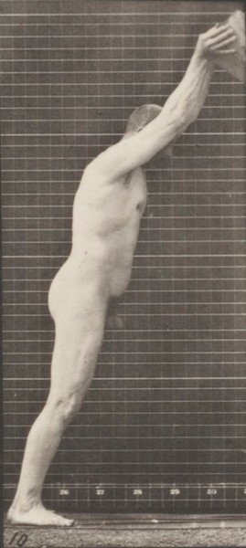 Nude man lifting a log on end