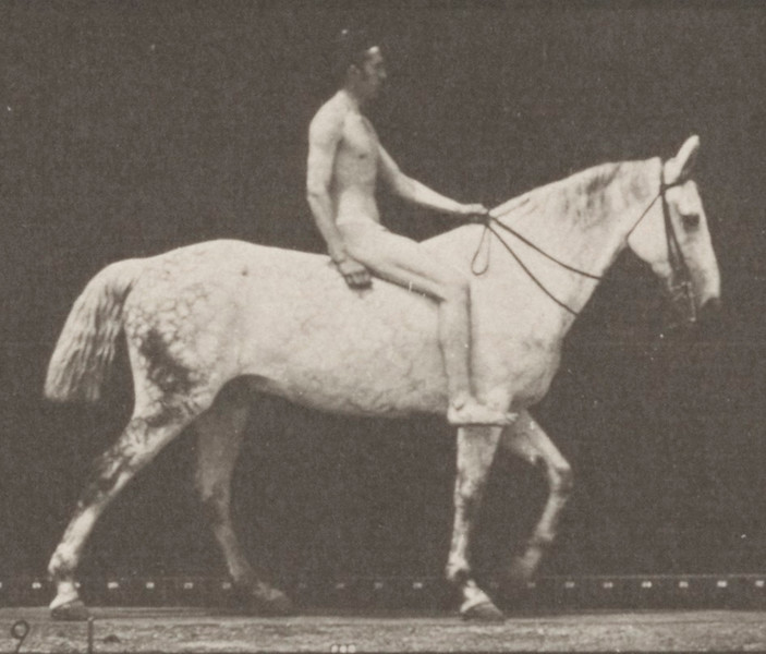 Horse Smith walking bareback with nude rider