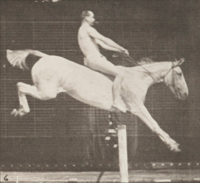 Horse Pandora jumping a hurdle, bareback, clearing and landing