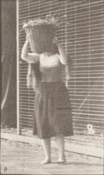 Woman lifting a 30 lb. basket from ground to head and turning