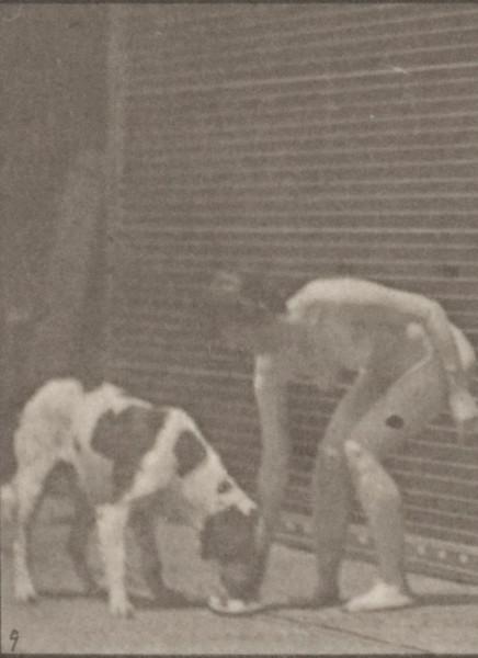 Nude woman feeding a dog