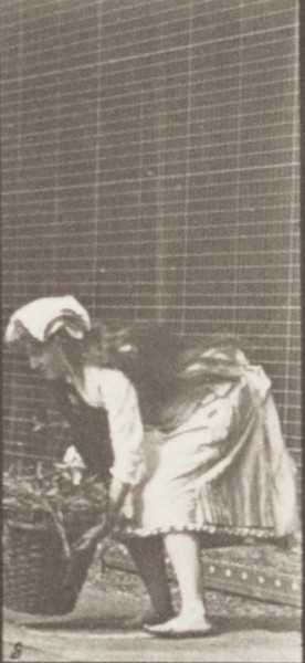Draped woman taking a 12-lb basket from head and placing it on ground