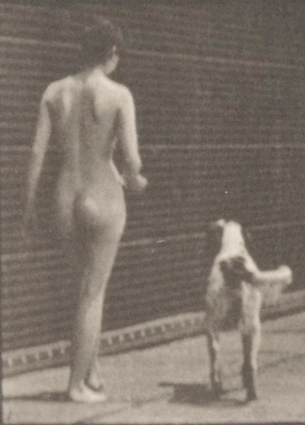 Nude woman feeding a dog