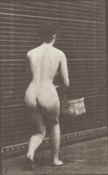 Nude woman kneeling on left knee with a basket in left hand and rising