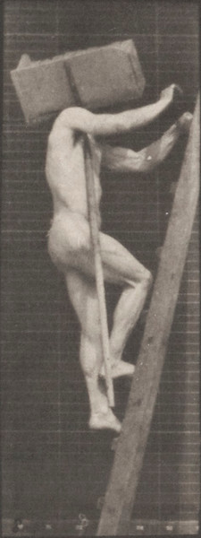Man in pelvis cloth climbing ladder, carrying bricks