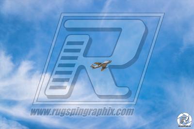 CVRC-Warbirds-254