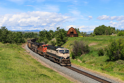 Eastbound emptys @ Jens, Montana