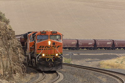 BNSF empty grainer over Providence Hill