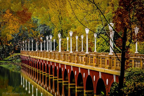 Autumn Bridge #2