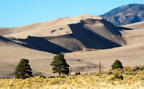 Great Sand Dune National Park - No.1-17