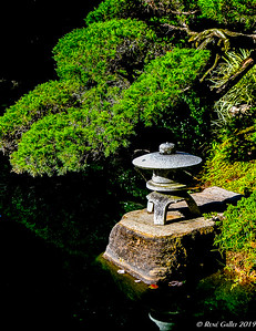 Black Cyprus Pagoda