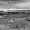 Field - Chambers Creek Park - Tacoma (October 2016)