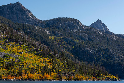 Lake Sabrina Fall Colors closeup
