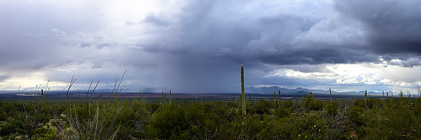 20200211-Storm cloud chasing Tucson Mtns-8003-Pano-1AIclear-TK7DustCTP