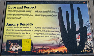 20191231-SNPE-Cactus-Forest-Drive-fwlp-4741