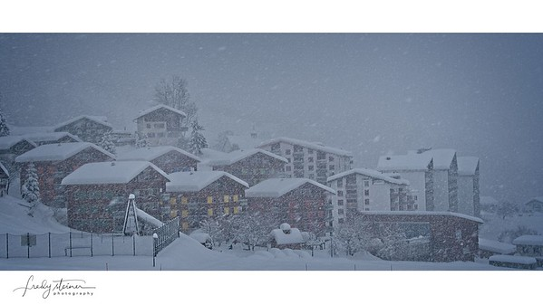 snow snow ....