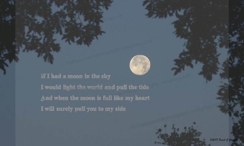If I had a moon