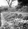 1971..   Plumstead Police station garden