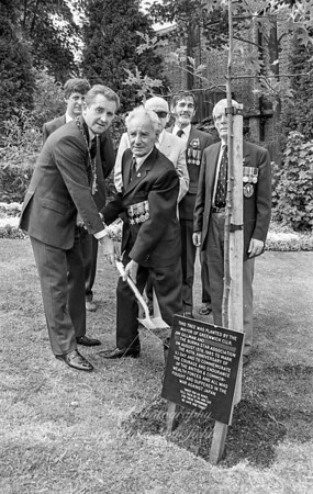 August 15th 1985 .Tree planting in St Mary's churchyard to commemorate the 40th anniversary of VJ  Day.  The mayor is councilor Jim Gillman and the gentleman holding the spade with him is Burma star veteran William Hook