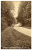 Early postcard, about 1912,  New road , Abbey Wood