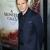 MONSTER CALL PREMIERE X LIAM NEESON-8811